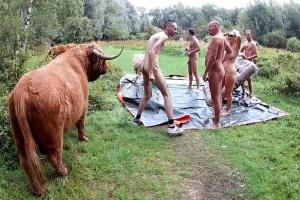 Gangbang se zralou kundou na louce mezi krávami